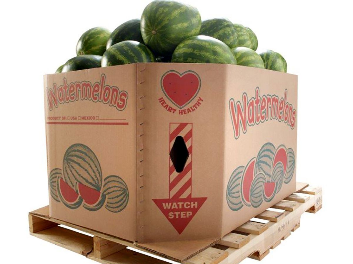 Triplewall Watermelon Craft