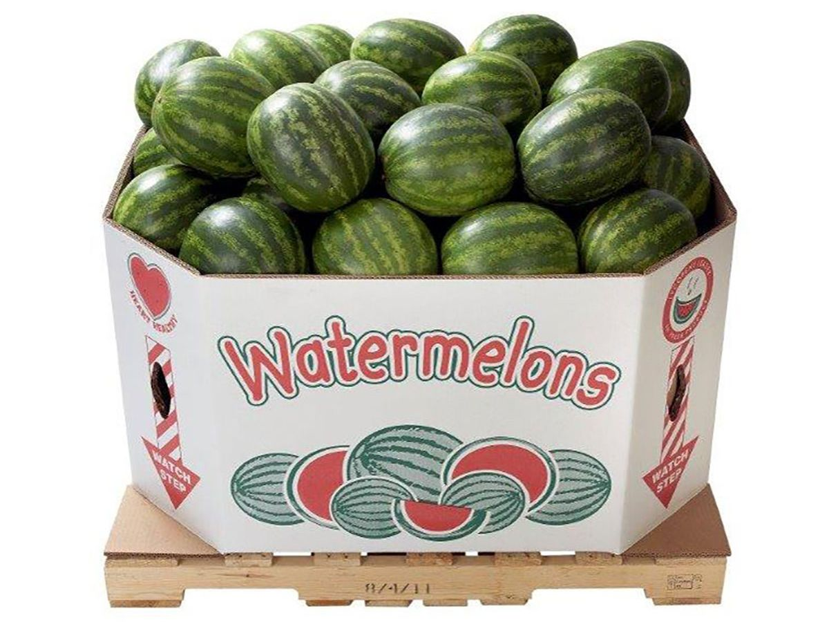 Triplewall Watermelon White